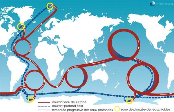 Schéma simplifié de la circulation océanique globale - site ocean-climate.org