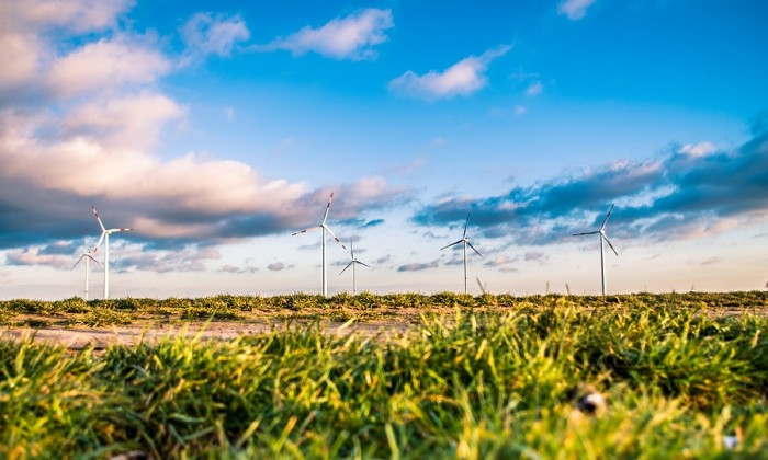 wind-farm-1209335_960_720