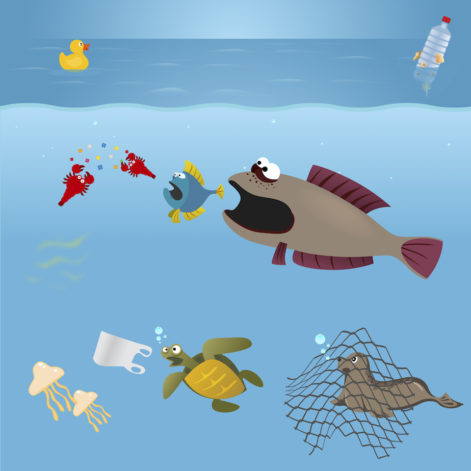 ocean and plastic Results 1 - 10 of 12  ocean plastics are a common problem affecting our oceans the national park  service is monitoring ocean plastics and encourages visitors.