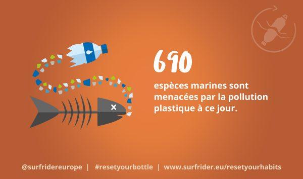 690 espèces marines menacées