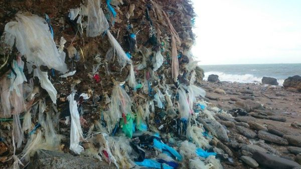 Gardiens-de-la_cote-Pollution-plage-decharge-dollemard