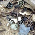 Biomédias (médias filtrants) retrouvés sur une plage