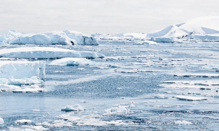 fonte de l'antarctique