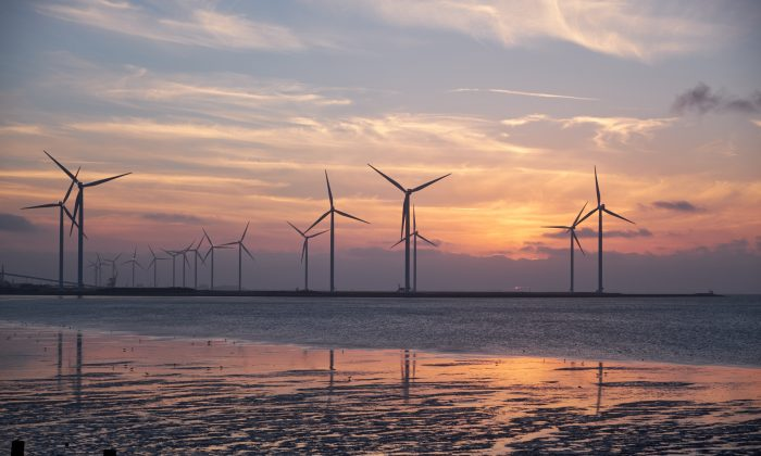 marine renewable energy projetc