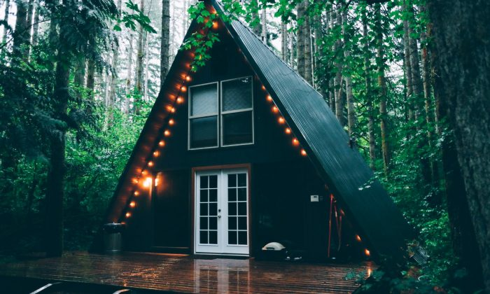 Tiny House forêt